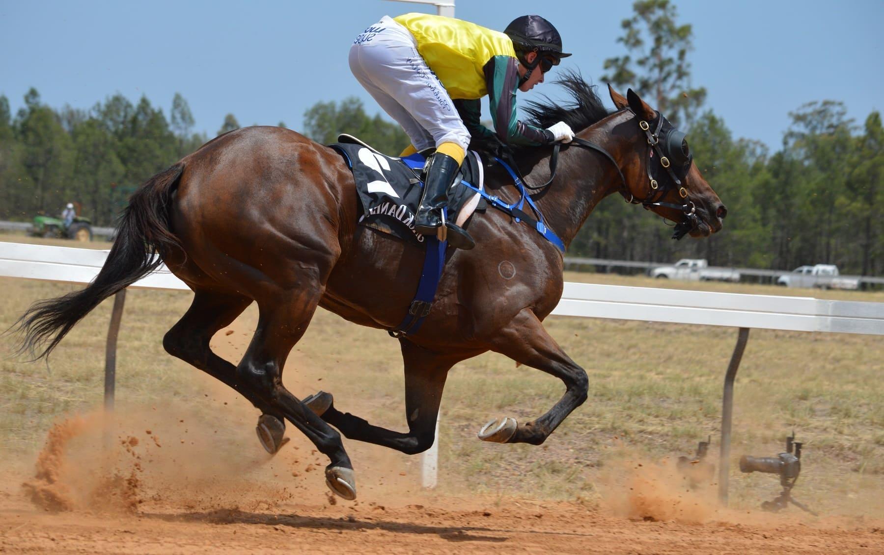 Езда верхом - опасный вид спорта