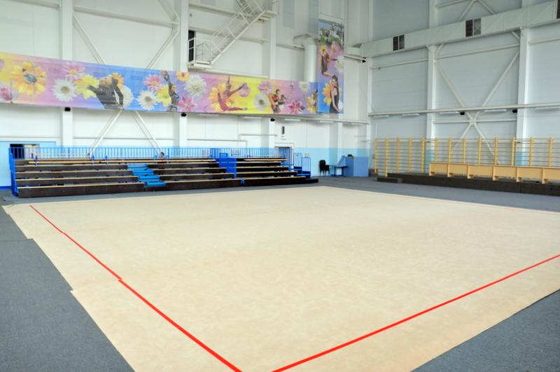 Ковер для художественной гимнастики соревновательный изображение в спортивном зале
