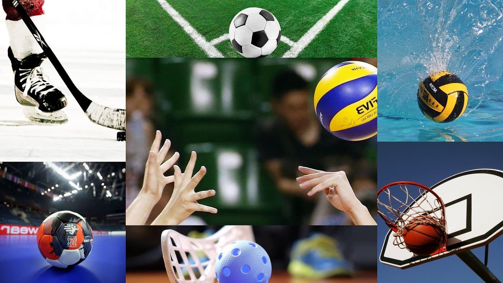 Все виды спорта по городам - фото