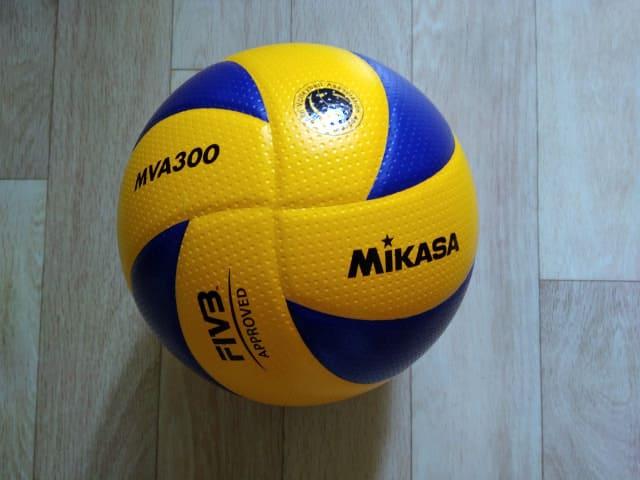Мяч волейбольный Mikasa MVA 300 фото